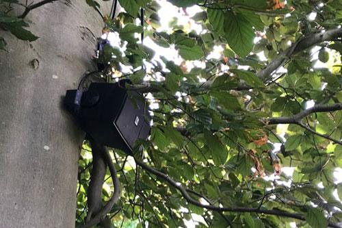 Buiten vertoeven in Foodgarden Plok, Didam met AUDAC WX502/OB